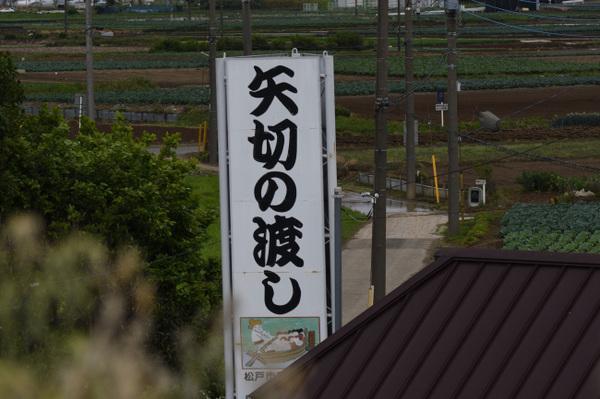 DSC_8881.JPG